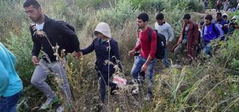 Среща с бежанци в софийския транспорт