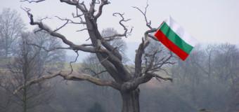 Bulgariq-340x160